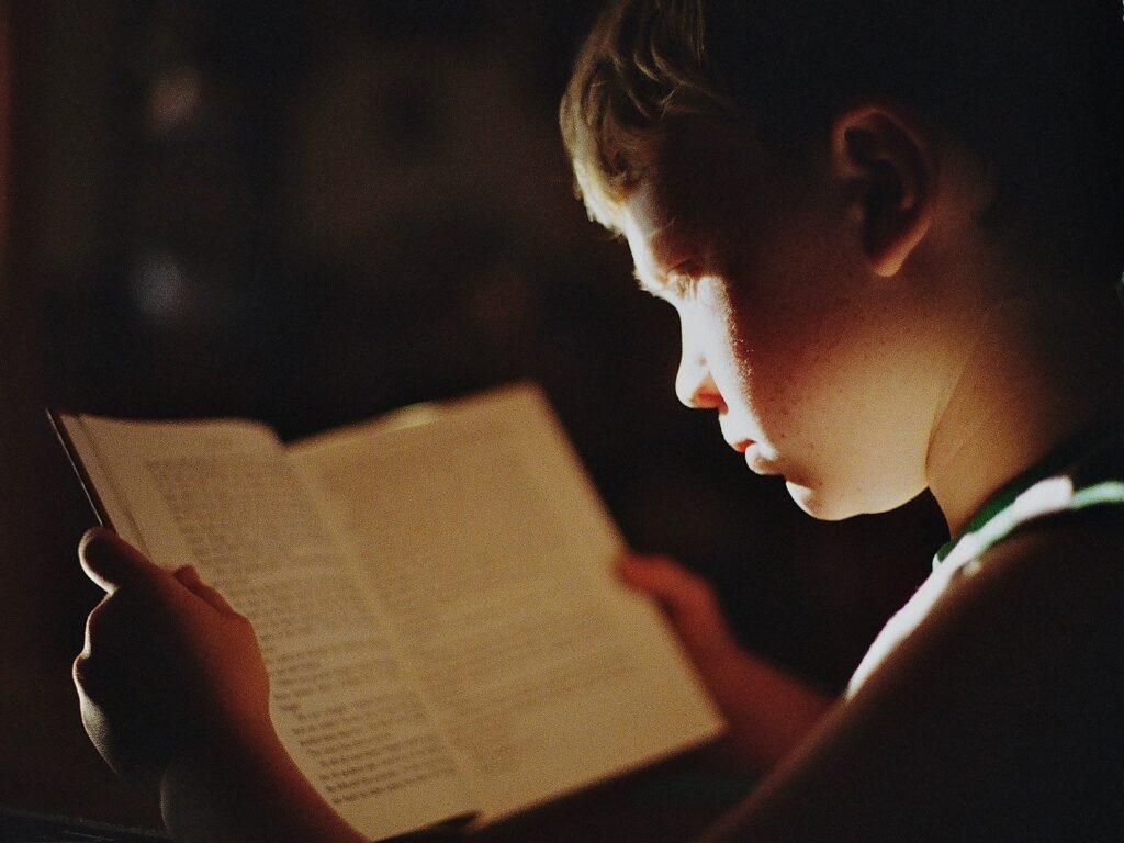 Читающий мальчик 1